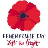 Remembrance day poppy web